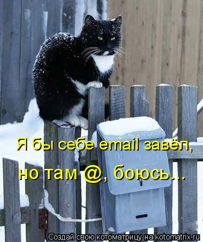 Котоматрица: Я бы себе email завёл,  но там @, боюсь...