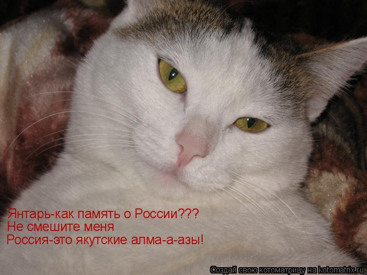 Котоматрица: Янтарь-как память о России???  Не смешите меня Россия-это якутские алма-а-азы!