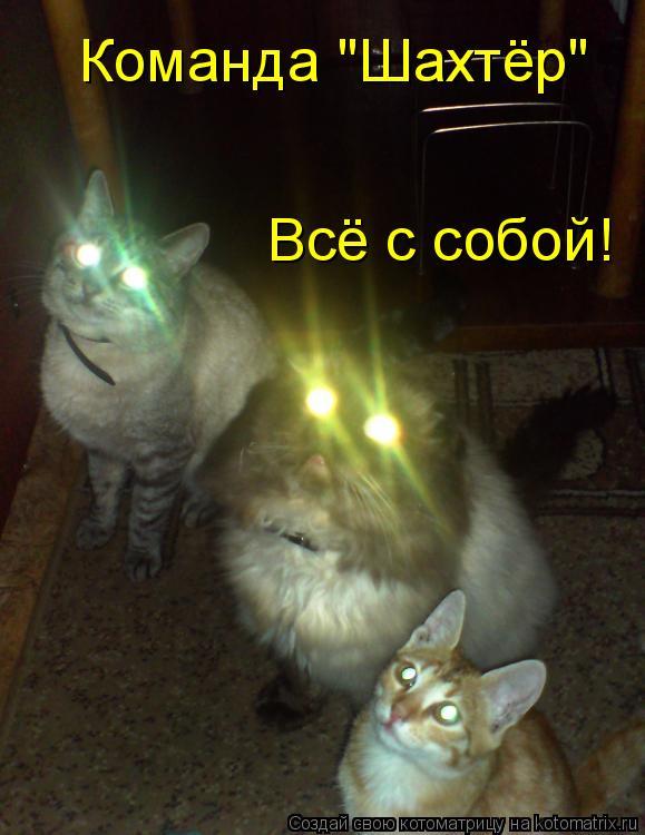 "Котоматрица: Команда ""Шахтёр"" Всё с собой!"
