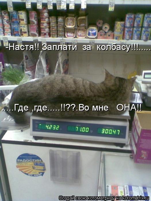 Котоматрица: -Настя!! Заплати  за  колбасу!!!...... .....Где ,где.....!!??.Во мне   ОНА!!