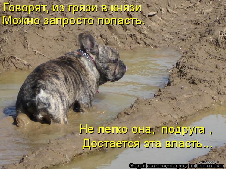 Котоматрица: Говорят, из грязи в князи Можно запросто попасть. Достается эта власть….. Не легко она, «подруга»,