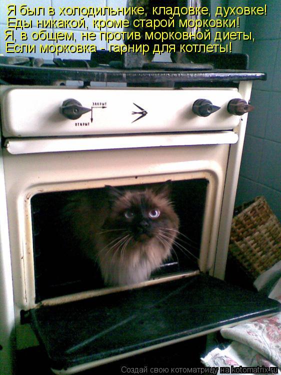 Котоматрица: Я был в холодильнике, кладовке, духовке! Еды никакой, кроме старой морковки! Я, в общем, не против морковной диеты, Если морковка - гарнир для