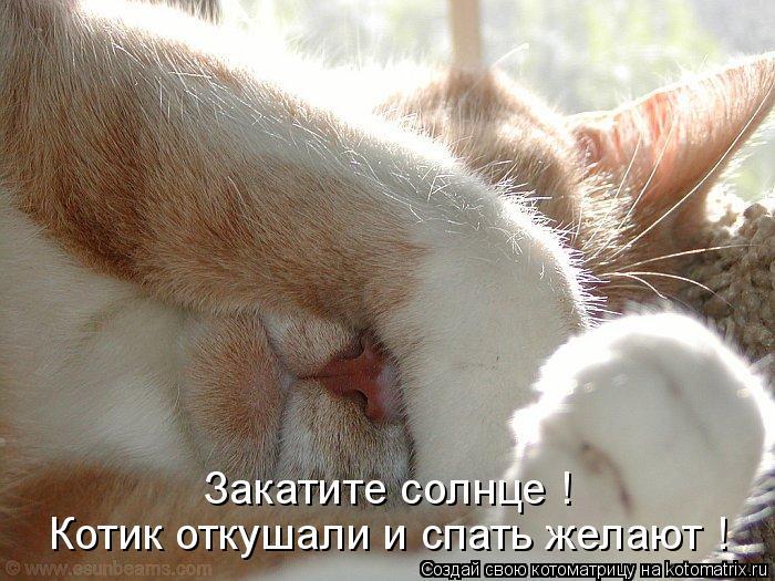 Котоматрица: Котик откушали и спать желают ! Закатите солнце !