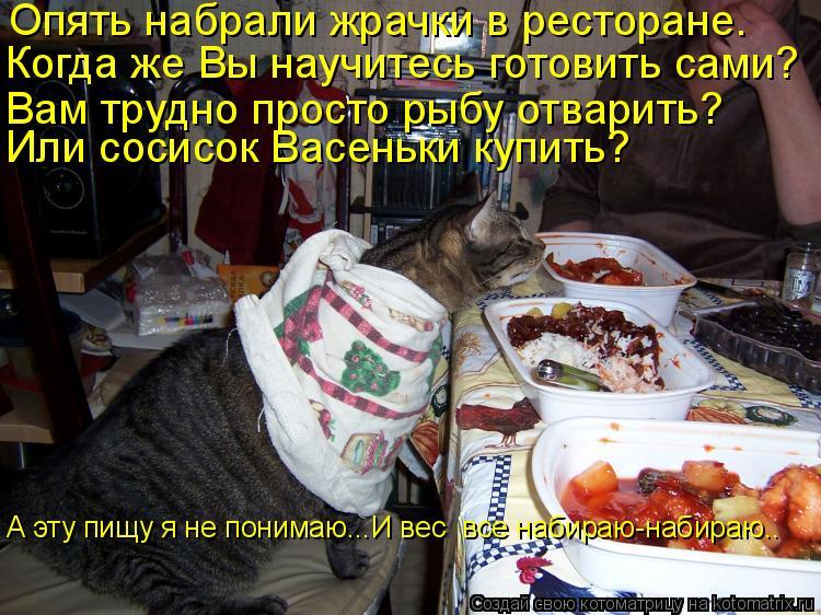 Котоматрица: Опять набрали жрачки в ресторане.  Когда же Вы научитесь готовить сами? Вам трудно просто рыбу отварить?  Или сосисок Васеньки купить? А эту