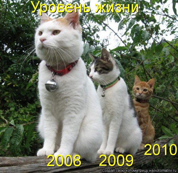 Котоматрица: Уровень жизни 2008 2009 2010