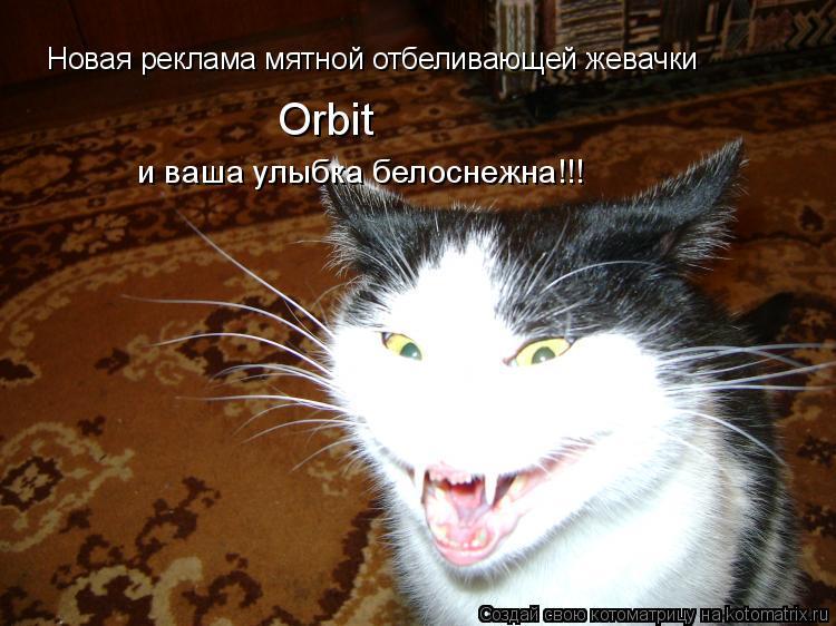 Котоматрица: Новая реклама мятной отбеливающей жевачки Orbit и ваша улыбка белоснежна!!!