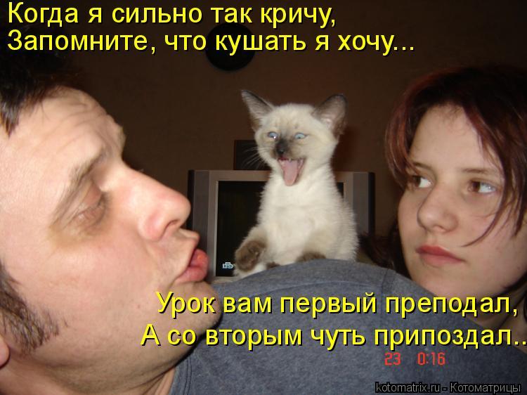 Котоматрица: Когда я сильно так кричу,  Запомните, что кушать я хочу….. А со вторым чуть припоздал….. Урок вам первый преподал,