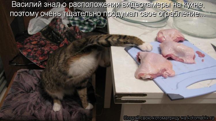 Котоматрица: Василий знал о расположении видеокамеры на кухне, поэтому очень тщательно продумал свое ограбление...