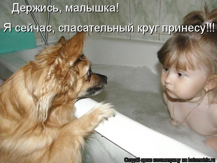 Котоматрица: Держись, малышка! Я сейчас, спасательный круг принесу!!!