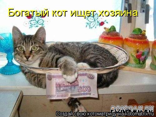Котоматрица: Богатый кот ищет хозяина