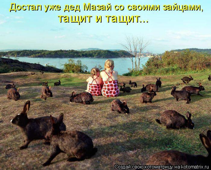 Котоматрица: Достал уже дед Мазай со своими зайцами,  тащит и тащит...