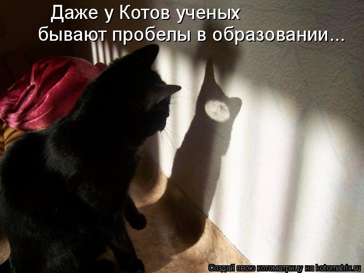 Котоматрица: Даже у Котов ученых  бывают пробелы в образовании...