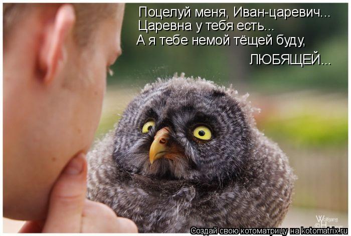 Котоматрица: Поцелуй меня, Иван-царевич... Царевна у тебя есть... ЛЮБЯЩЕЙ... А я тебе немой тёщей буду,