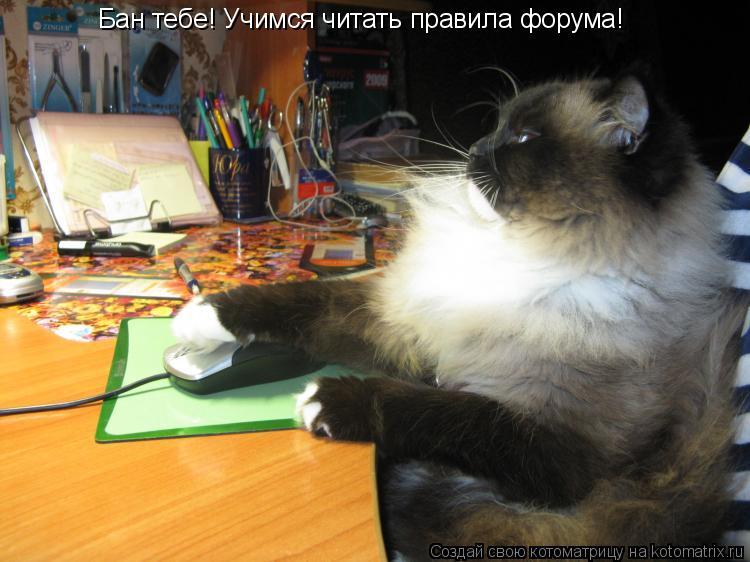 Котоматрица: Бан тебе! Учимся читать правила форума!