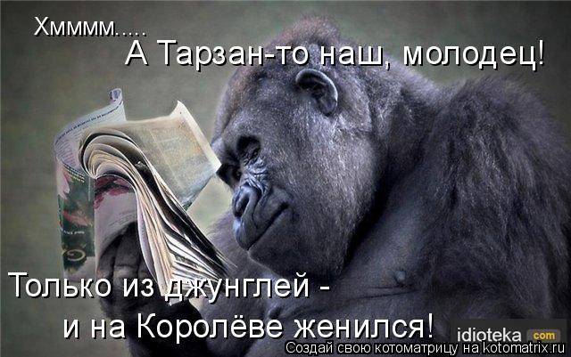Котоматрица: Хмммм.....  А Тарзан-то наш, молодец! Только из джунглей -  и на Королёве женился!