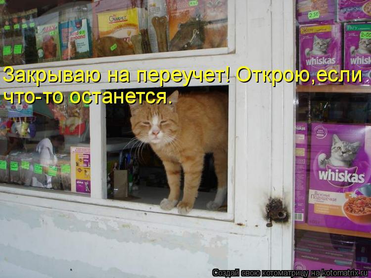 Котоматрица: Закрываю на переучет! Открою,если  что-то останется.