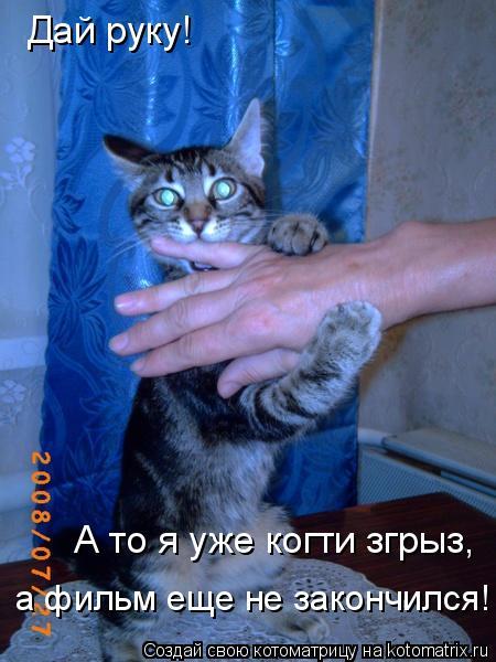 Котоматрица: Дай руку! А то я уже когти згрыз,  а фильм еще не закончился!