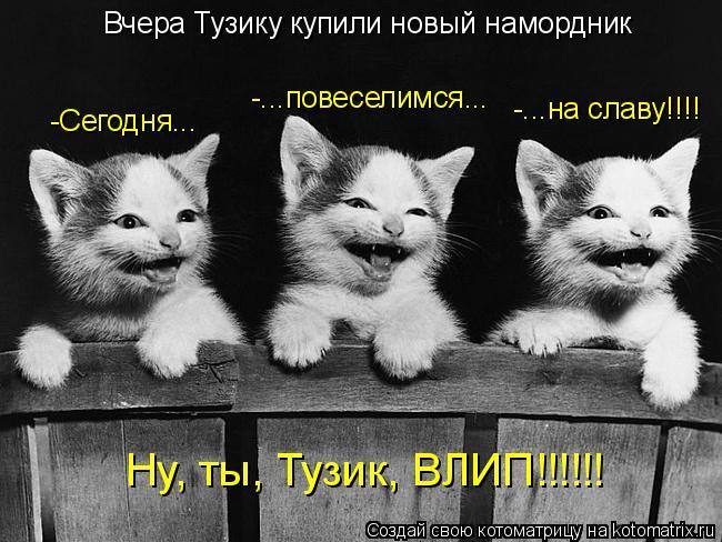 Котоматрица: Вчера Тузику купили новый намордник -Сегодня... -...повеселимся... -...на славу!!!! Ну, ты, Тузик, ВЛИП!!!!!!