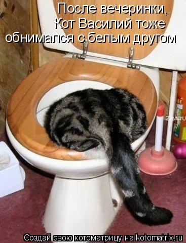 Котоматрица: После вечеринки, Кот Василий тоже обнимался с белым другом