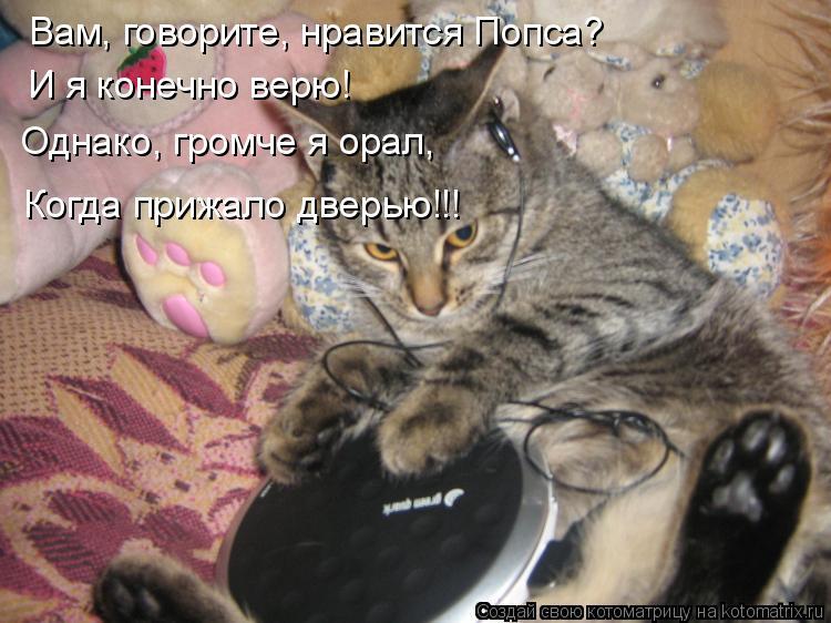 Котоматрица: Вам, говорите, нравится Попса? И я конечно верю! Однако, громче я орал, Когда прижало дверью!!!