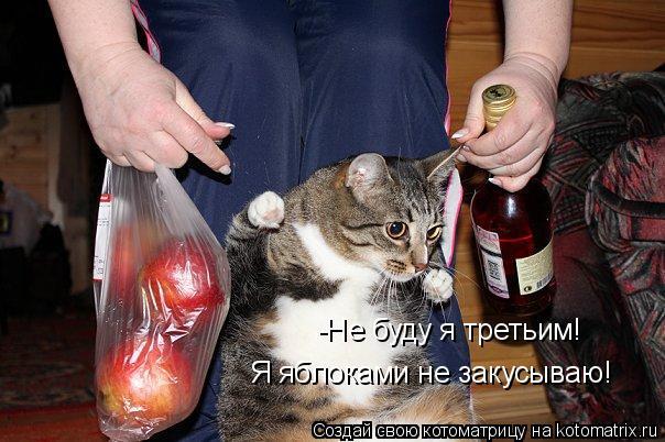 Котоматрица: -Не буду я третьим! Я яблоками не закусываю!
