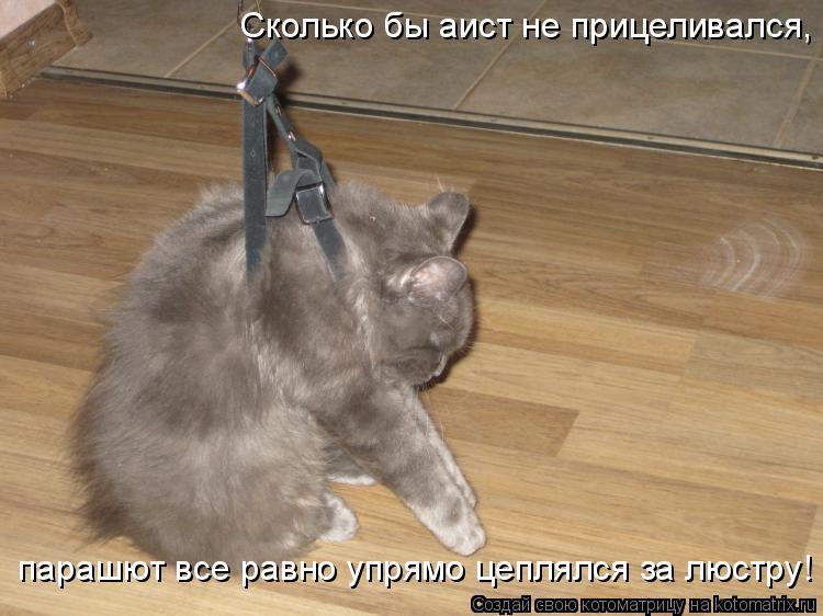 Котоматрица: Сколько бы аист не прицеливался, парашют все равно упрямо цеплялся за люстру!