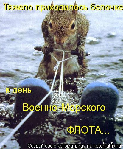 Котоматрица: Тяжело приходилось белочке в день Военно-Морского ФЛОТА...