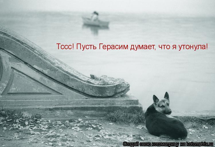 Котоматрица: Тссс! Пусть Герасим думает, что я утонула!
