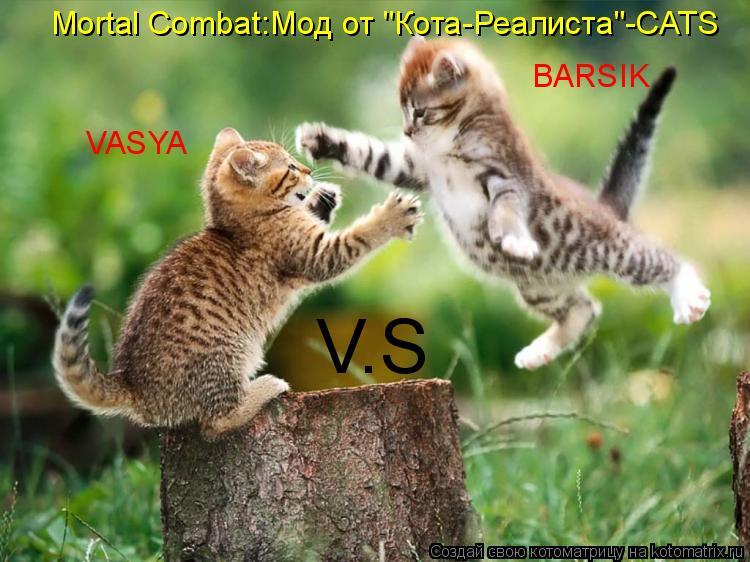 """Котоматрица: Mortal Combat:Мод от """"Кота-Реалиста""""-CATS VASYA V.S BARSIK"""