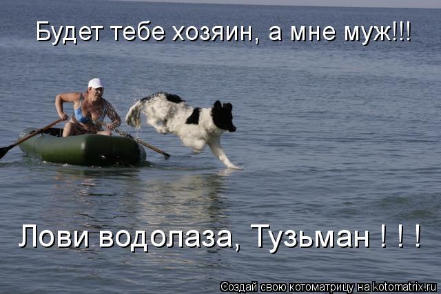 Котоматрица: Будет тебе хозяин, а мне муж!!! Лови водолаза, Тузьман ! ! !