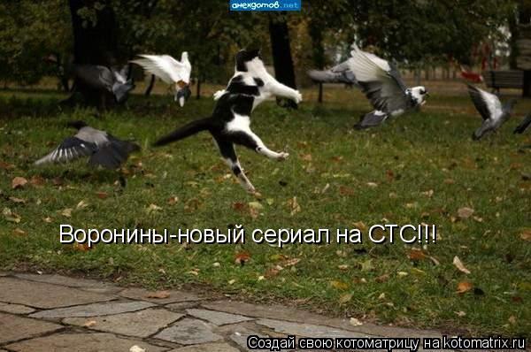 Котоматрица: Воронины-новый сериал на СТС!!!