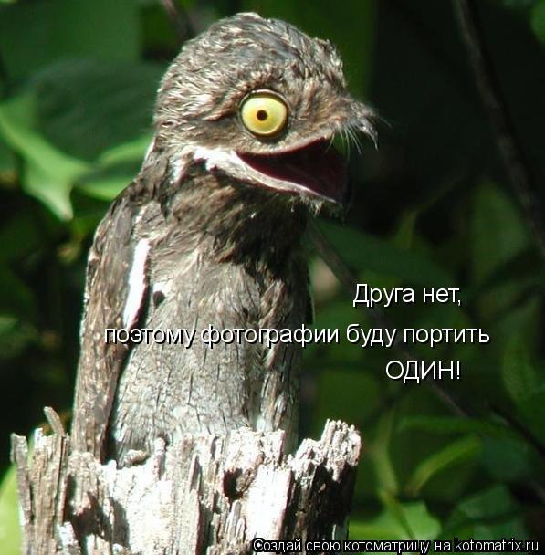 http://kotomatrix.ru/images/lolz/2010/04/20/550857.jpg