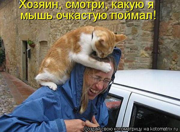 Котоматрица: Хозяин, смотри, какую я  мышь очкастую поймал!