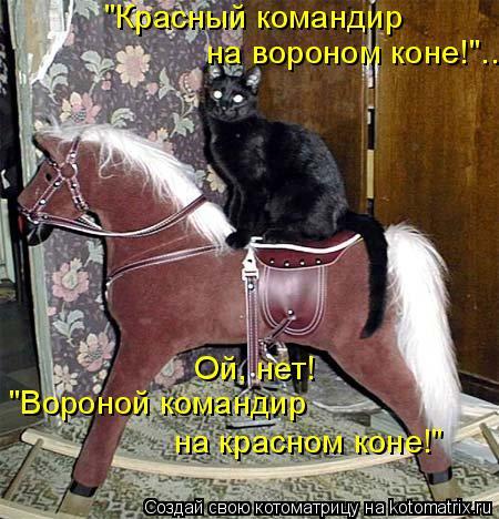 """Котоматрица: """"Красный командир  на вороном коне!""""...  Ой, нет! """"Вороной командир на красном коне!"""""""