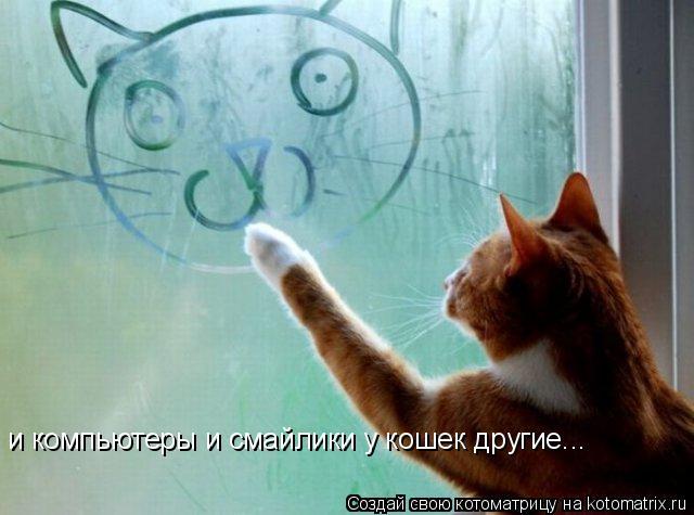 Котоматрица: и компьютеры и смайлики у кошек другие...