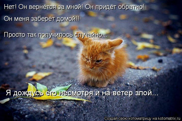 Котоматрица: Нет! Он вернётся за мной! Он придёт обратно! Он меня заберёт домой!! Просто так получилось случайно... Я дождусь его несмотря и на ветер злой...