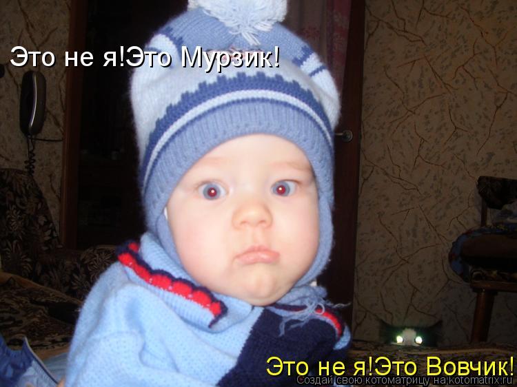 Котоматрица: Это не я!Это Вовчик! Это не я!Это Мурзик!