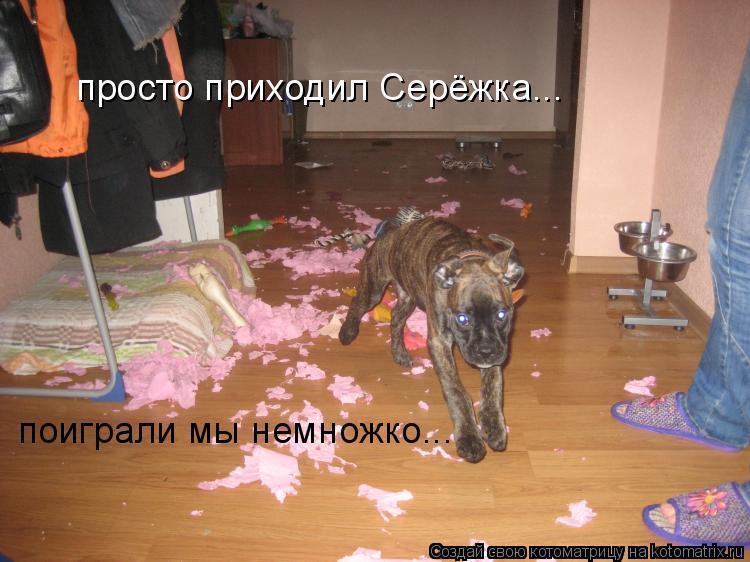 Собинский район. Официальный сайт органов