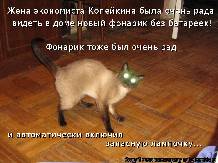 Котоматрица: Жена экономиста Копейкина была очень рада видеть в доме новый фонарик без батареек! Фонарик тоже был очень рад и автоматически включил зап
