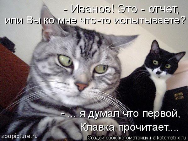 Котоматрица: - Иванов! Это - отчет,  или Вы ко мне что-то испытываете? - ... я думал что первой,  Клавка прочитает....