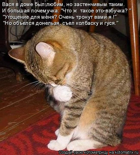 """Котоматрица: Вася в доме был любим, но застенчивым таким. И большая почемучка: """"Что ж  такое это-взбучка? """" """"Угощение для меня? Очень тронут вами я !"""" """"Но объе"""