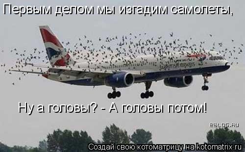 Котоматрица: Первым делом мы изгадим самолеты, Ну а головы? - А головы потом!