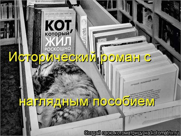 Котоматрица: Исторический роман с наглядным пособием