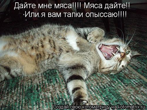 http://kotomatrix.ru/images/lolz/2010/04/24/555149.jpg