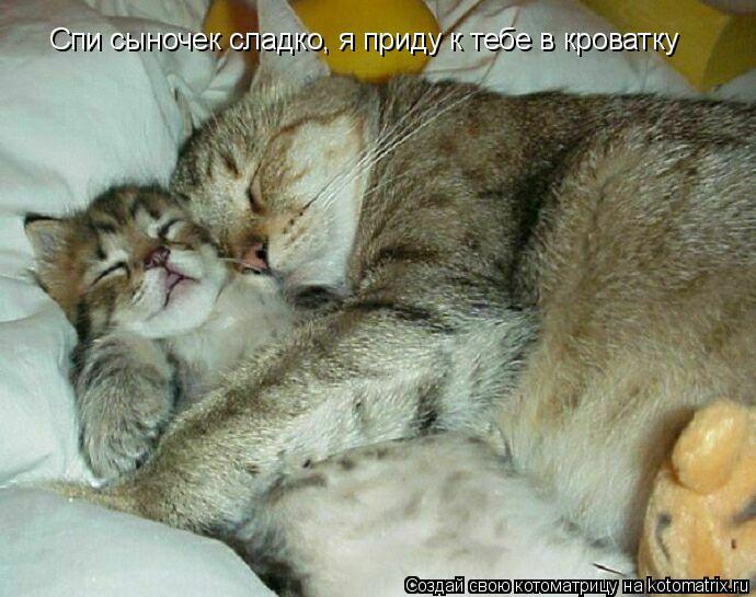 Котоматрица: Спи сыночек сладко, я приду к тебе в кроватку