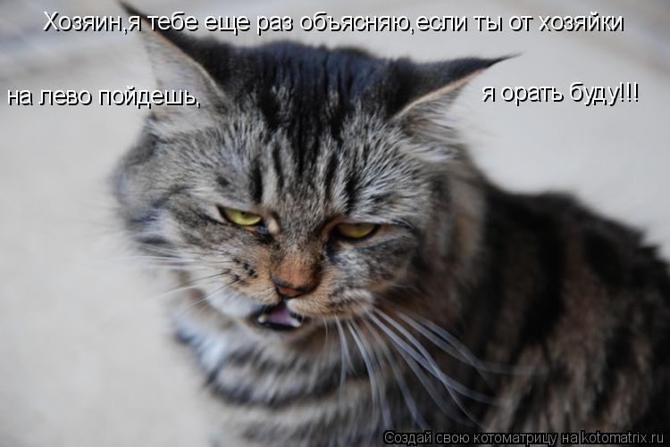 Котоматрица: Хозяин,я тебе еще раз объясняю,если ты от хозяйки на лево пойдешь, я орать буду!!!