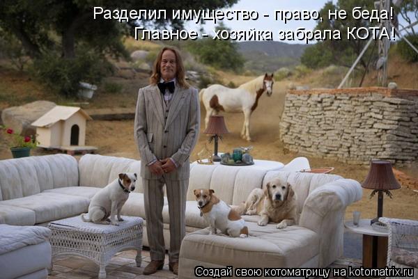 Котоматрица: Главное - хозяйка забрала КОТА! Разделил имущество - право, не беда!