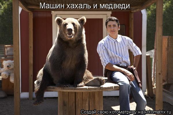 Котоматрица: Машин хахаль и медведи