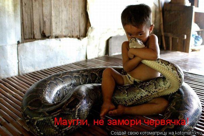 Котоматрица: Маугли, не замори червячка!