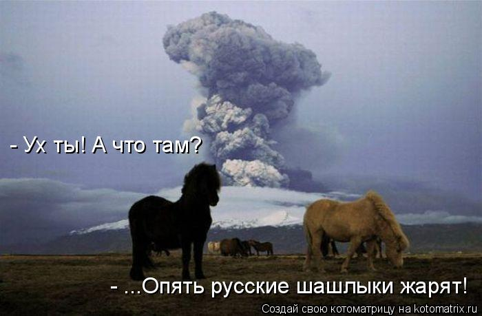 Котоматрица: - Ух ты! А что там? - ...Опять русские шашлыки жарят!